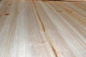 加工厂家直销杉木拼接板(集成板)