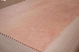 临沂市兰山4家木业被要求限期整改