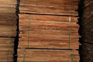 河南白椿木烘干板材