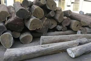 绿檀木禁忌及绿檀木制品如何保养?