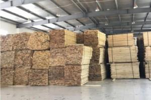 翰林源木业专业批发桦木板材