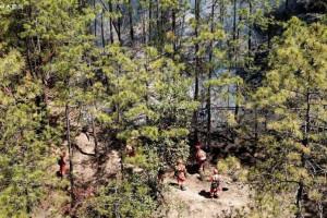 美国助力搭建秘鲁木材产业的远程森林现场管理系统