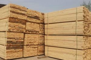 藤县举行中国东盟国际木材加工交易产业园项目正式签约
