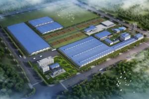 总投资105亿元,广西中国林业集团生态城项目一期开工