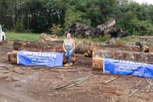 美洲美国白橡原木原产地直销