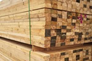 大部分地区木材出货量明显增加,木材价格也将进入上行周期