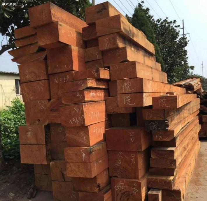 大绿柄桑木材的用途