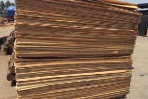 下辖乡镇纷纷响应费县大力推进木业产业转型升级
