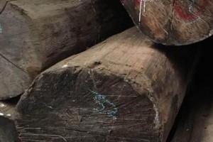 缅甸木材企业对木材供应链透明度的保证