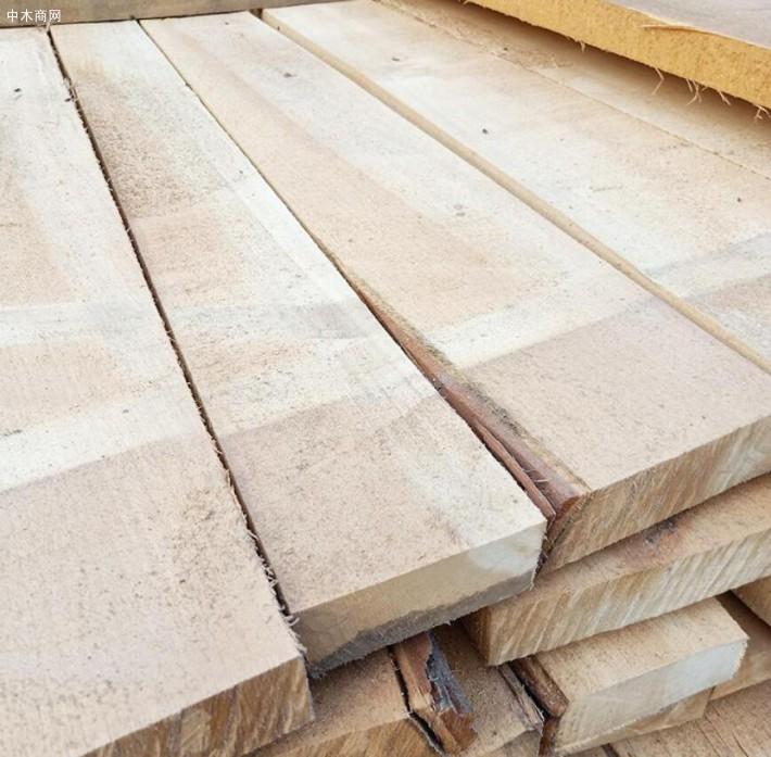 东北杨木板材的优缺点吗及东北烘干杨木板材价格多少钱一方价格