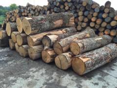 新冠疫情对欧盟热带木材进口影响变化不大