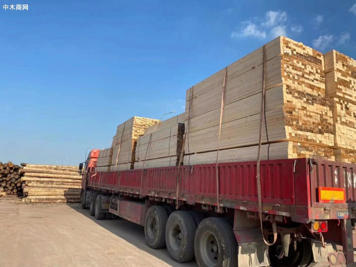 松木托盘料,建筑木方厂家直销品牌