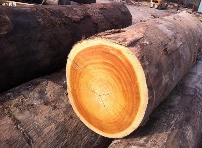 六安市叶集区:从原木交易,建筑模板生产到家居实木地板畅销海外