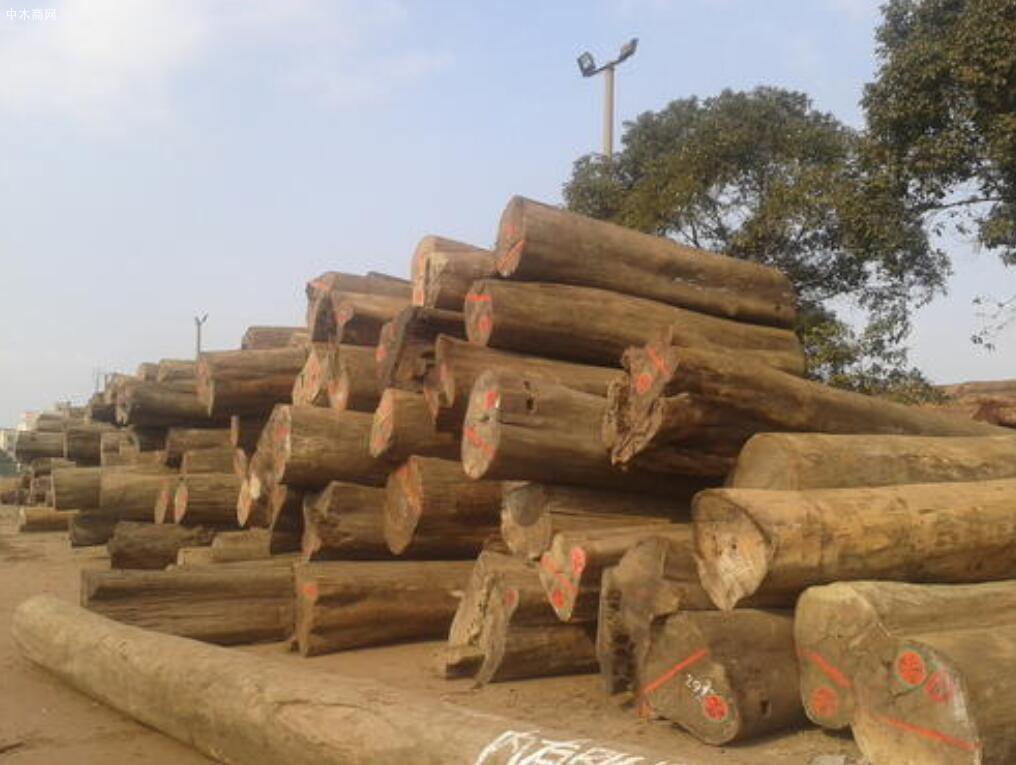 金车花梨木属于什么档次的木头
