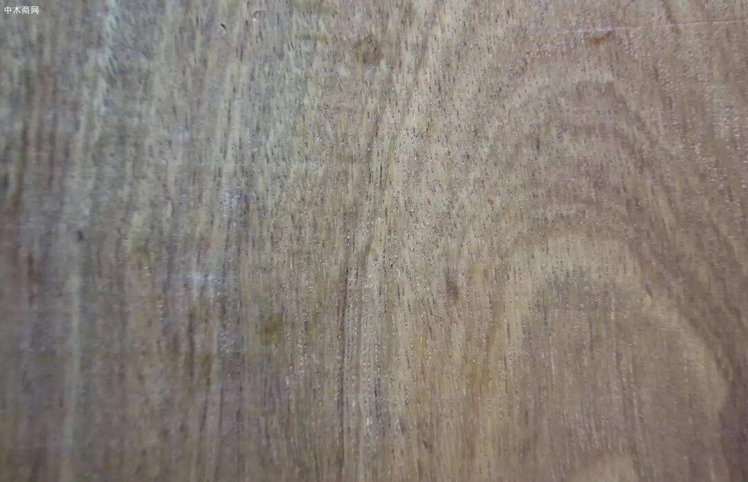 金车花梨木属于什么档次的木头图片