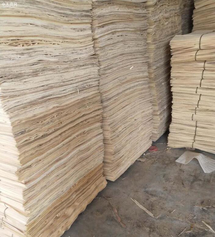 杨木三拼木皮生产厂家价格