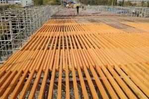 俄罗斯进口全桦木多层板LVL工程方木应用展示1