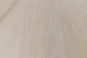 2020年南宁市人造板目标产量780万立方米