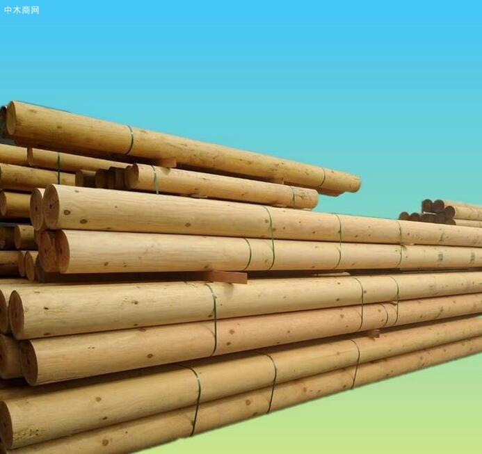 樟子松防腐木寿命多久及能使用多少年价格