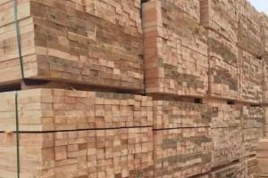 盐城港大力推动木材加工产业做大做强