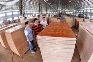 河池市走进生产一线深入调研广西板材企业