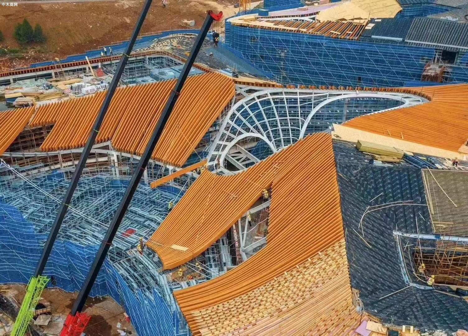 俄罗斯进口全桦木多层板,全桦木建筑覆膜板应用展示价格