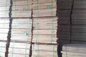 橡胶木板材价格最近有上涨吗_2020年9月25日