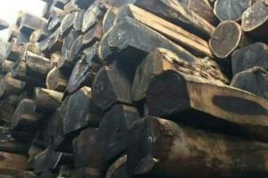 沉贵宝原木价格多少钱一吨_2020年9月26日