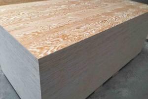 湖北黄石华盛人造板项目建成试产