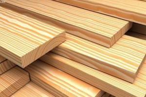 深入调研钦州木材加工产业发展现状