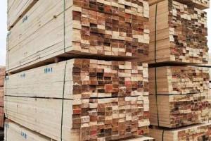 俄罗斯Santarin厂家直销松木毛边材,刨花材,包装材,地板