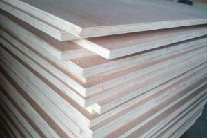 印度胶合板加工厂家正努力寻求原材料来源的本土化