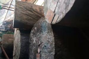 巴花原木对外长期出售批发
