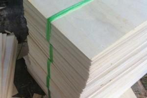 贵港市支柱产业木材加工产业发展迅猛