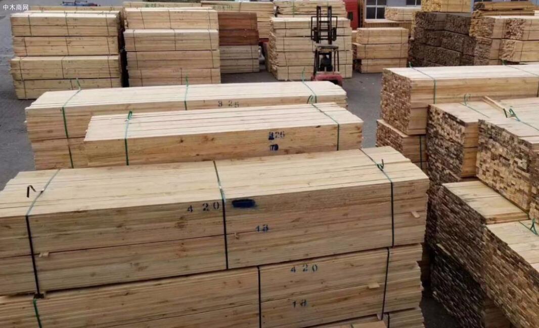 濮阳工程木方市场价格