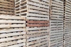 安徽省合肥长丰县对辖区2家木制品企业实施行政处罚