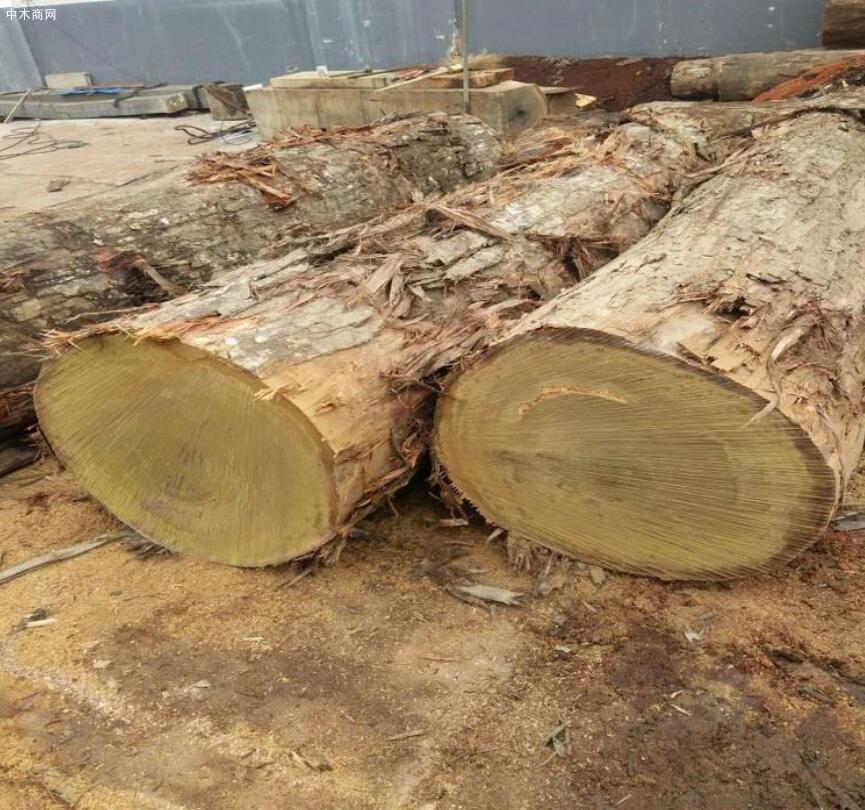 重蚁木地板的优缺点及选购技巧