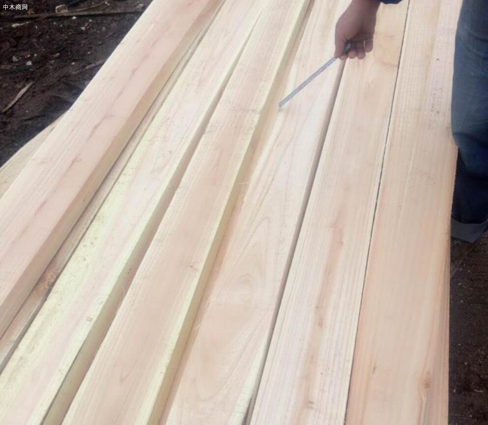广西省贵港市共有木材加工企业3400多家
