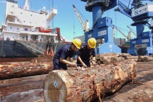 中国最大进口木材港口是那里?