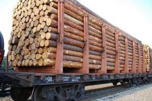 俄罗斯,新西兰,加拿大等国进口针叶木材大幅下降