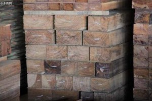 2020年1月至9月中国成为玻利维亚木材产品最大买家
