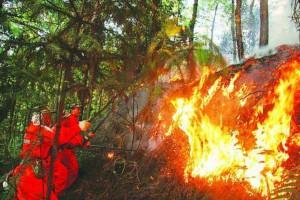 山东费县召开全县森林防火工作会议