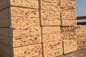 铁杉建筑木方厂家直销自有物流体系