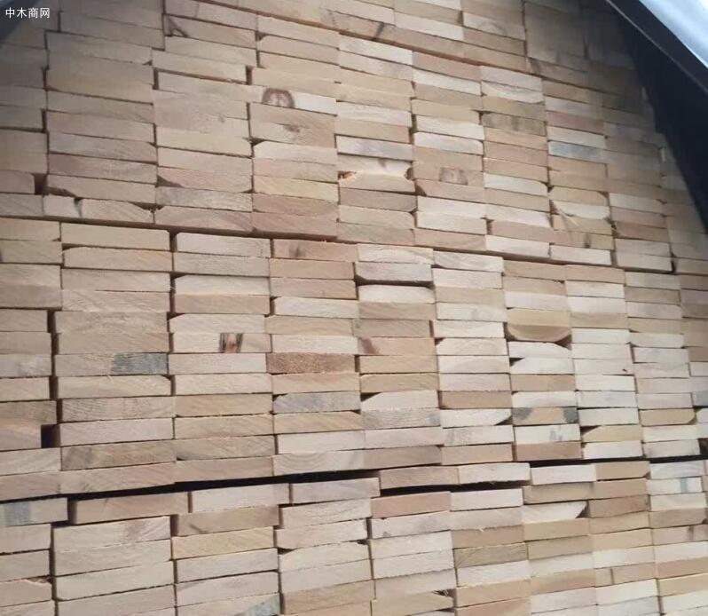 中俄边境同江口岸进口木材货运量29.84万立方米