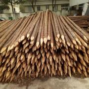 宣城市盛平木业有限公司