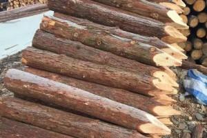 杉木桩施工打桩怎么打?