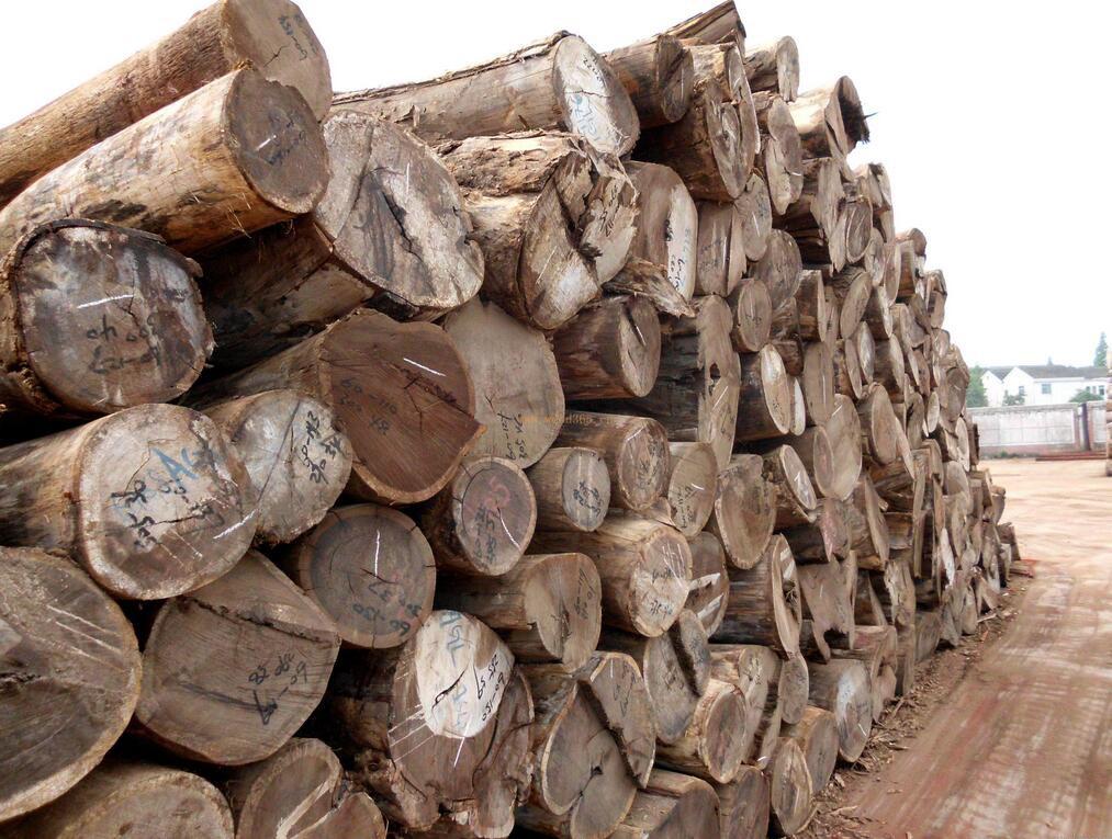 求购:鸡翅木,乌鸡木原木做家具原料