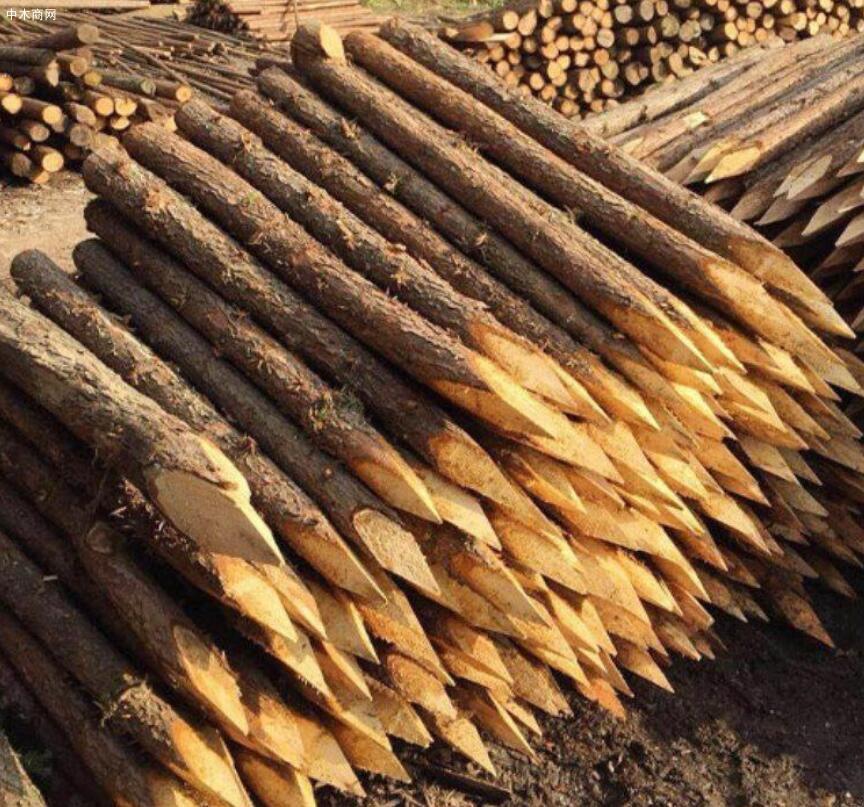 盛平木业杉木桩规格和价格图片厂家