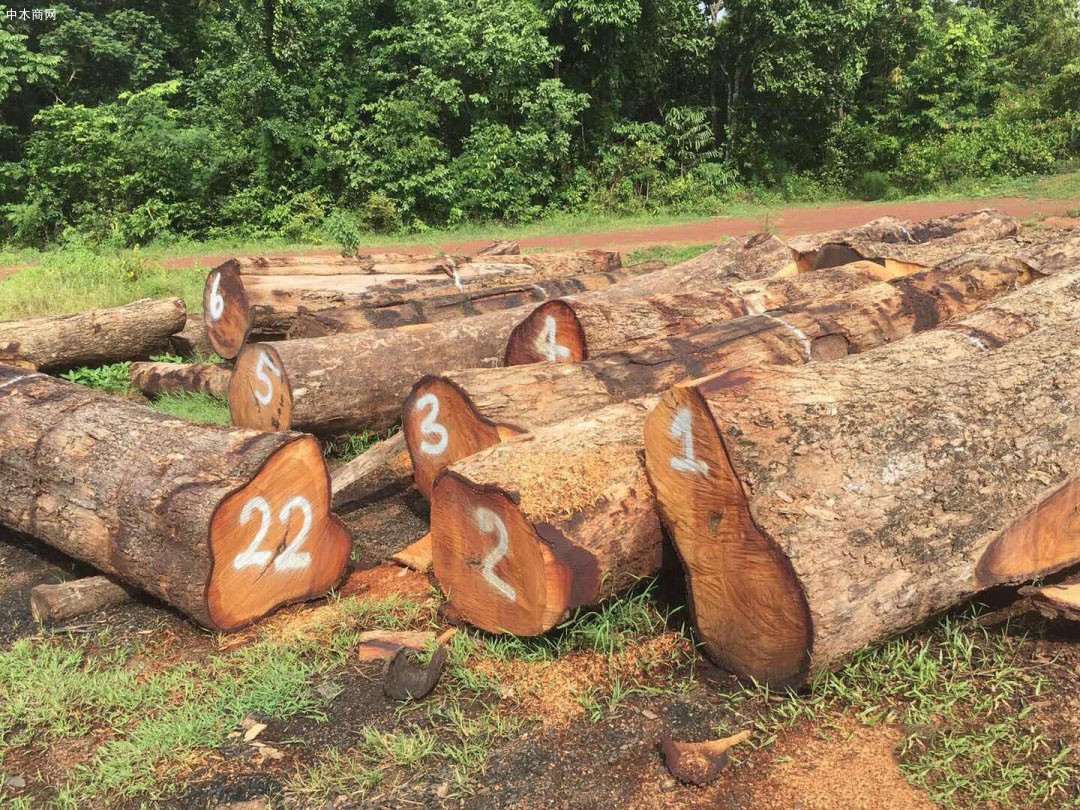 泰国红花梨木材的优缺点有哪些
