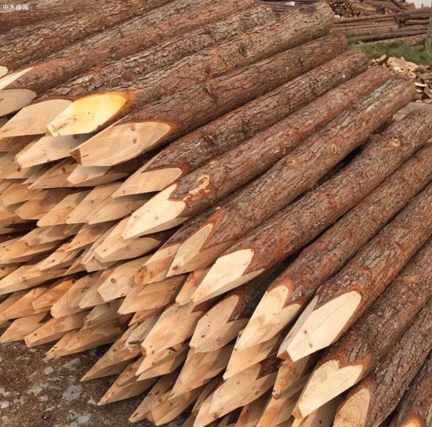 上海河道杉木桩多少钱一根品牌